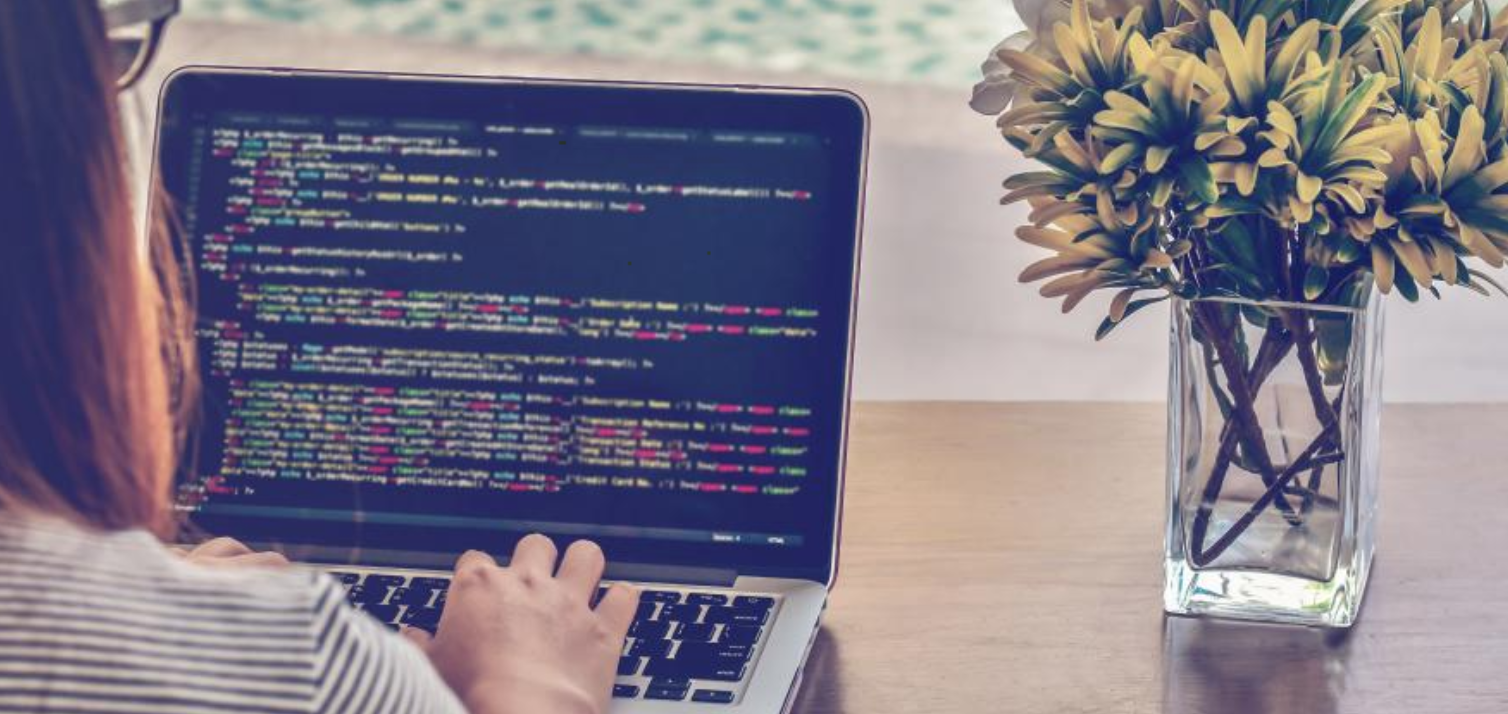 Software development courses for students: Summer 2020